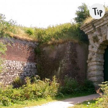 tip-westerschelde-fort-rammekens