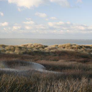 stranden van Schouwen-Duiveland